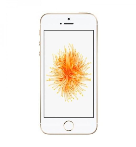 Apple iPhone SE 16GB Gold ( Золотой )